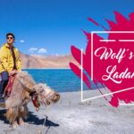 Ladakh Is One of the Greatest Tourist Attraction places